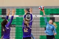 Gallery: Volleyball Sumner @ Olympia